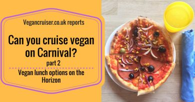 Cruise Vegan Carnival Horizon lunches