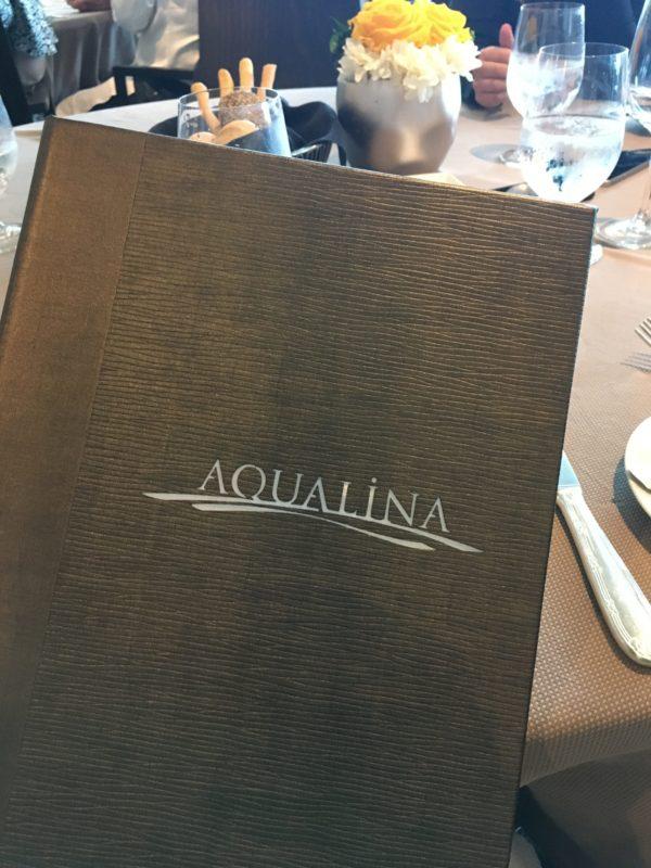 Aqualina menu cover